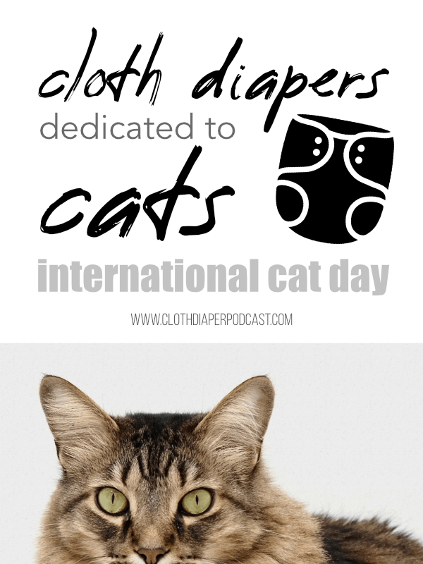 Cloth Diapers with Cats for International Cat Day